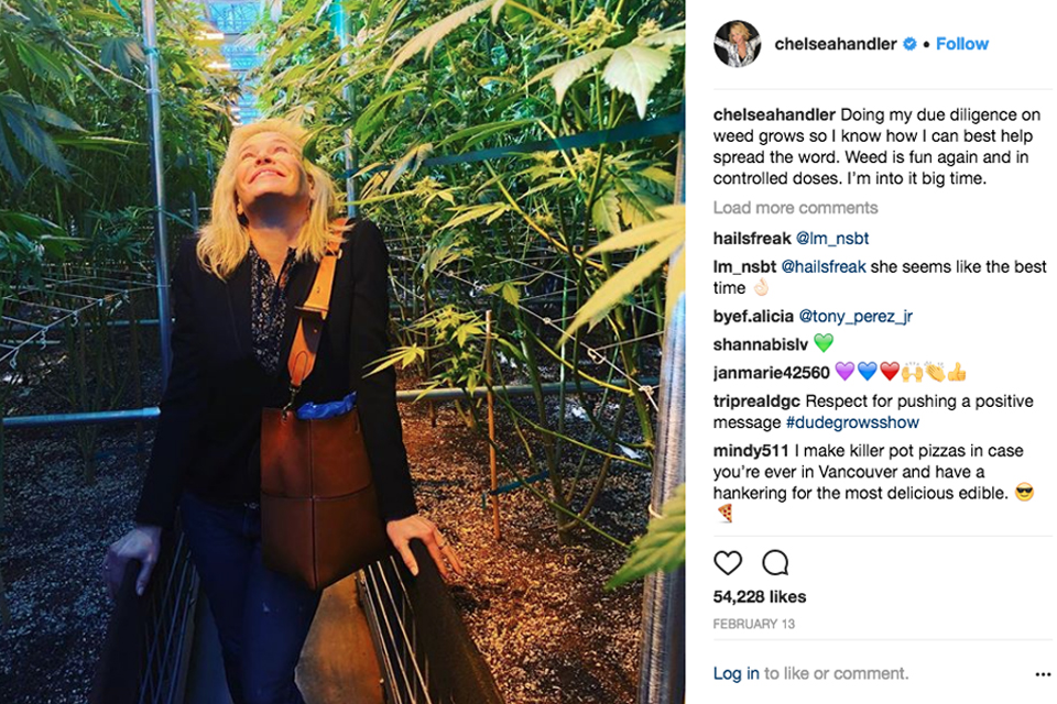 Image result for chelsea handler cannabis